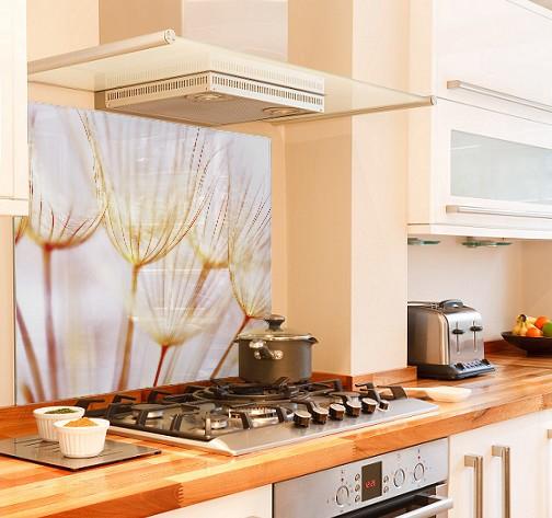 Dandelion Summer diy kitchen glass splashback