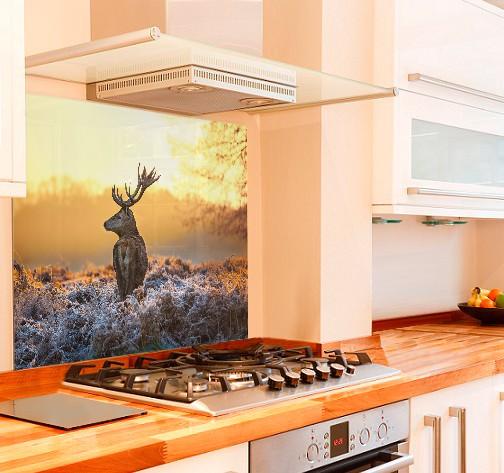 Majestic Deer Kitchen Glass Splashback