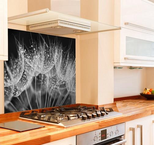 Night Dandelion Kitchen Glass Splashback