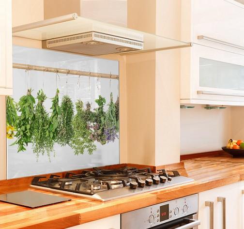 Hanging Herbs Kitchen Glass Splashback