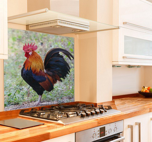Rooster Kitchen Glass Splashback