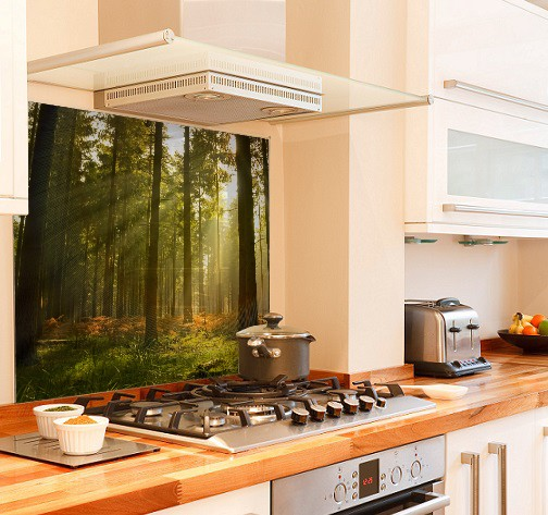 Forest sunlight diy kitchen glass splashback