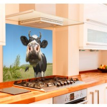 Moo Cow Glass Kitchen Splashback