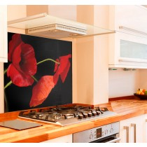 Pretty Poppies Kitchen Glass Splashback