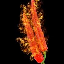Red Hot Chill Pepper sq diy kitchen glass splashback
