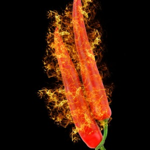 Red Hot Chill Pepper sq diy kitchen glass splashback
